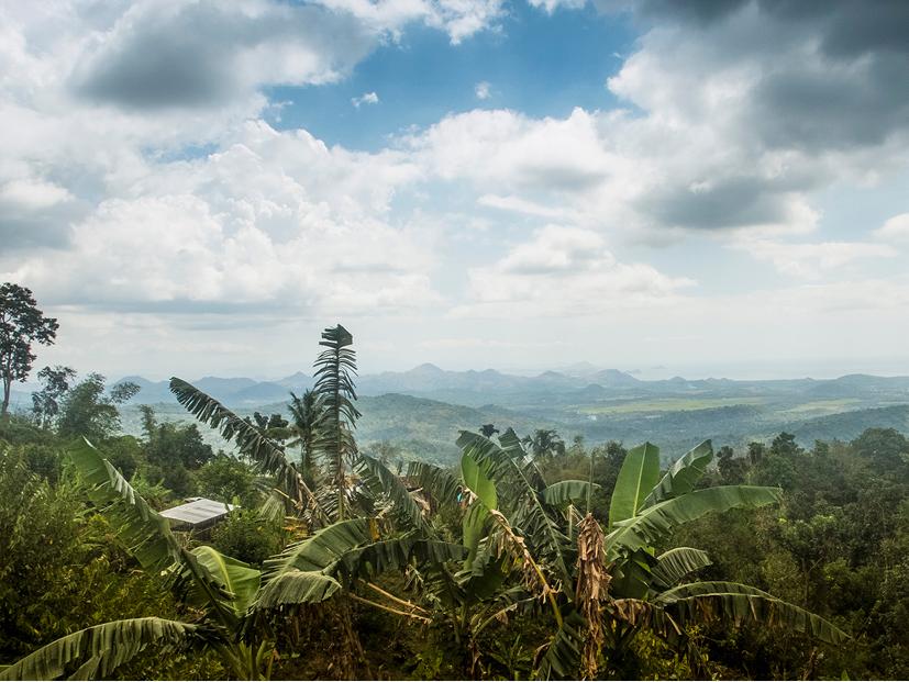 indonesia36